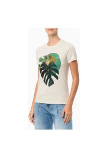 Camiseta Areia Estampada Costela De Adão Calvin Klein Bege