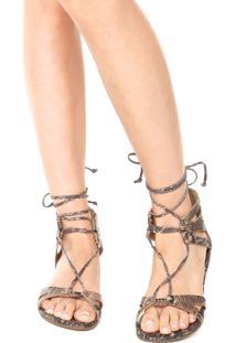 Rasteira Dafiti Shoes Gladiadora Recortes Marrom