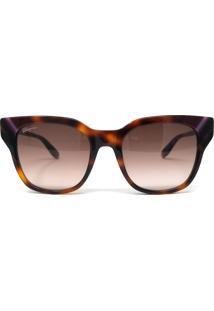 Óculos De Sol Salvatore Ferragamo Sf875S 238 53 Marrom Mesclado